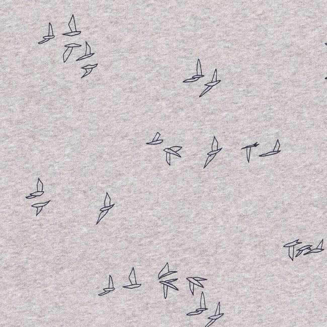Sweat grey seagull - Bask in the Sun num 2