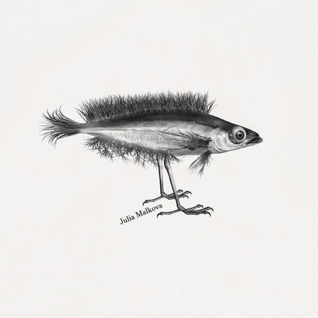 T-shirt en coton bio natural hybrid fish - Bask in the Sun num 2