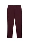 Pantalon tailleur new-york prune - 17h10 - 5