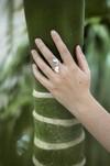Bague feuilles hoya kerrii - argent recyclé - Elle & Sens - 1