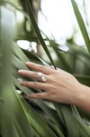 Bague feuilles hoya kerrii - argent recyclé - Elle & Sens - 3